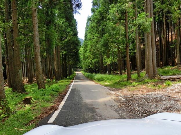 兵庫県道39号