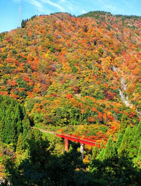 写真: 九頭竜線 勝原鉄橋