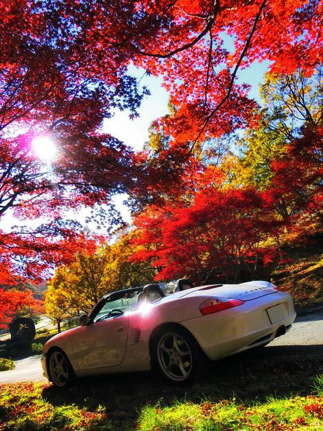 初秋の昼下がり