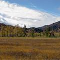 Photos: 高層湿原の青空