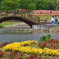 写真: 花の公園