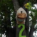 写真: 鳥様用街路樹マンション2号室
