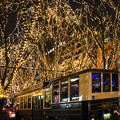 Photos: バスも輝いて