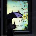 Photos: 雨模様