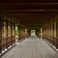 静寂の通天橋