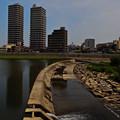 Photos: 魚道のある堰