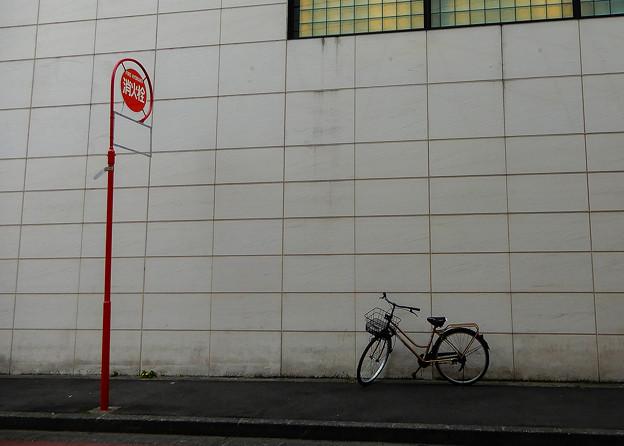 Photos: 居心地が悪そうな自転車