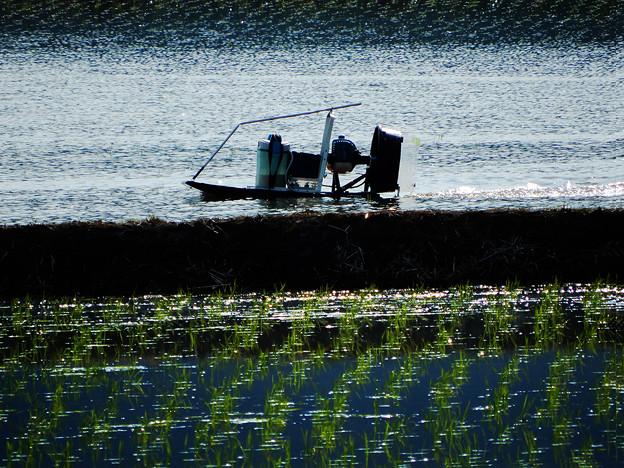 Photos: ラジコンAirBoat