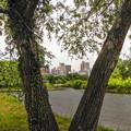 Photos: 河川敷から