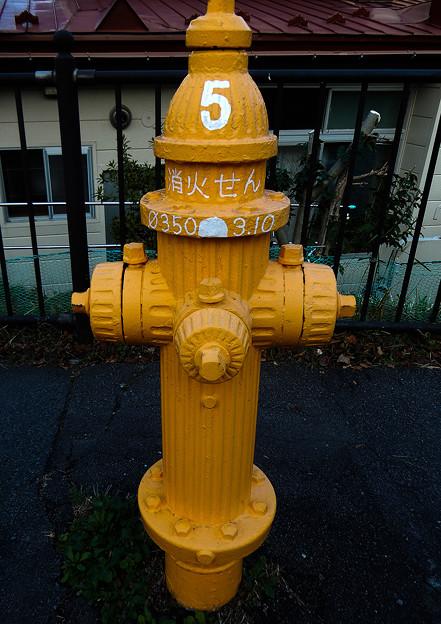 黄色の消火栓