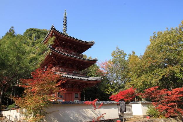 宝福寺の紅葉09