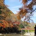 天神峡の紅葉06