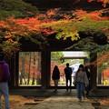 曹源寺の紅葉05