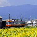 写真: 電車