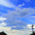 Photos: 処暑