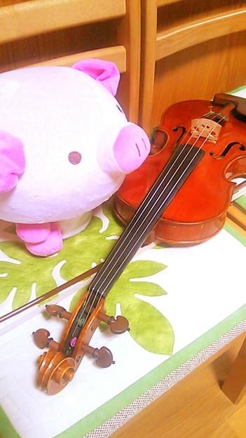 誰のバイオリン?