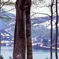 05032014破間川湖Image9