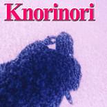 Knorinori(ケイ ノリノリ)ぼちぼち