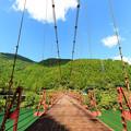 Photos: 蔵王橋