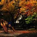 晩秋の彩 file-008