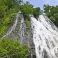 写真: オシンコシンの滝2