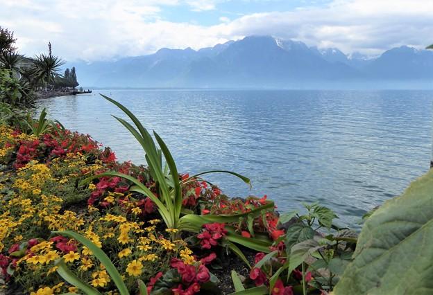 レマン湖風景