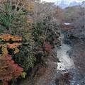 武甲山と紅葉(ホテルの部屋から)