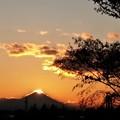 Photos: 冬至開けの夕景富士