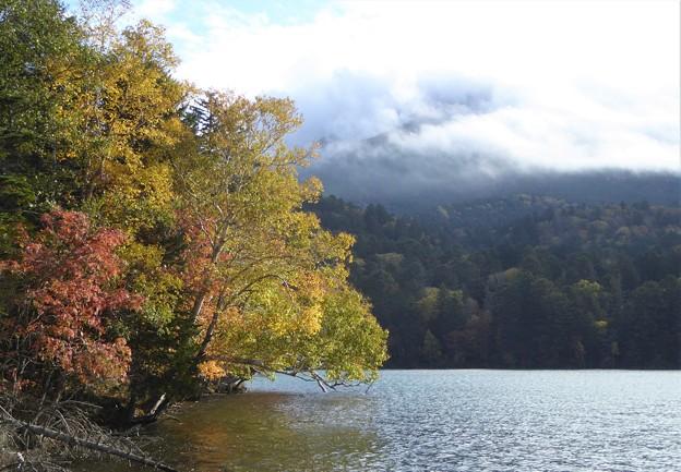 阿寒湖の秋(10月)
