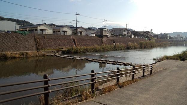 岩崎橋下流の飛び石 甲突川 鹿児島