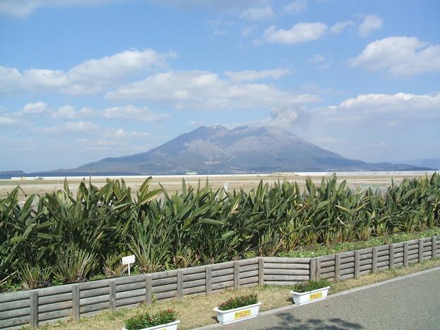 桜島 マリンポートかごしま 20110310