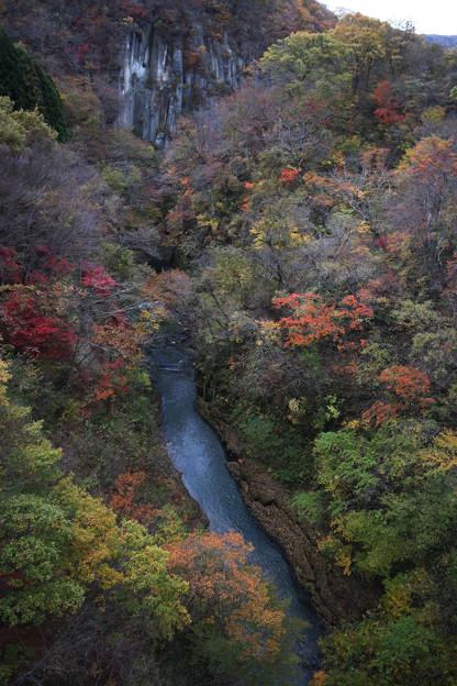 写真: 雪割橋から見下す秋