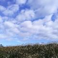 Photos: おぉ~い 雲よ!