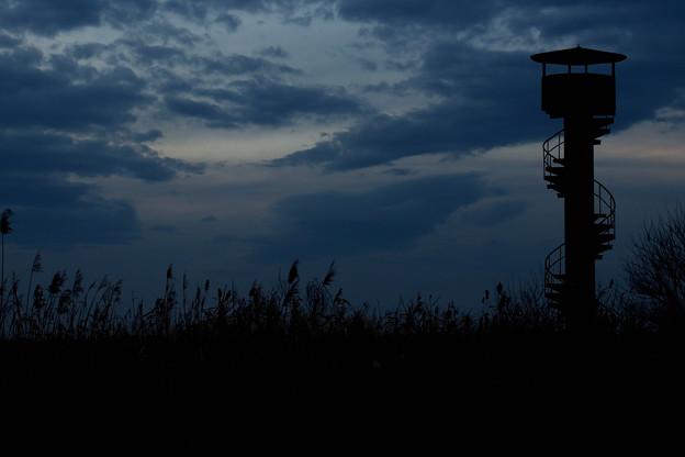 写真: 螺旋階段の塔