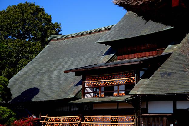 秋の屋根2