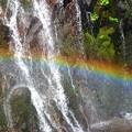 滝壺付近には素敵な虹も~