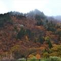 Photos: 山形道からの紅葉