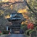 Photos: 陽林寺