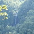 Photos: 三階の滝!
