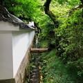 Photos: 30石山寺