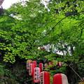 Photos: 40石山寺