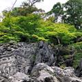 Photos: 41石山寺