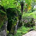 Photos: 42石山寺