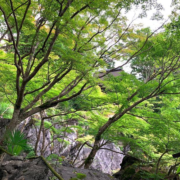 43石山寺