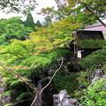 Photos: 44石山寺