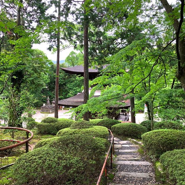 Photos: 46石山寺