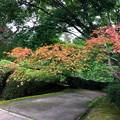 Photos: 47石山寺