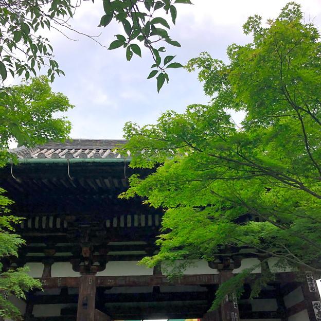 50石山寺