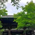 Photos: 50石山寺