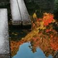 Photos: 足元で見つけた秋